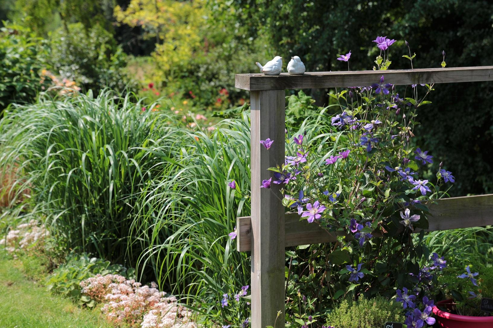 Terrasse plantation fl jardin for Jardin et plantation